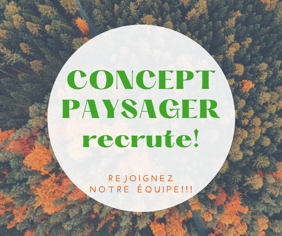Concept Paysager recrute